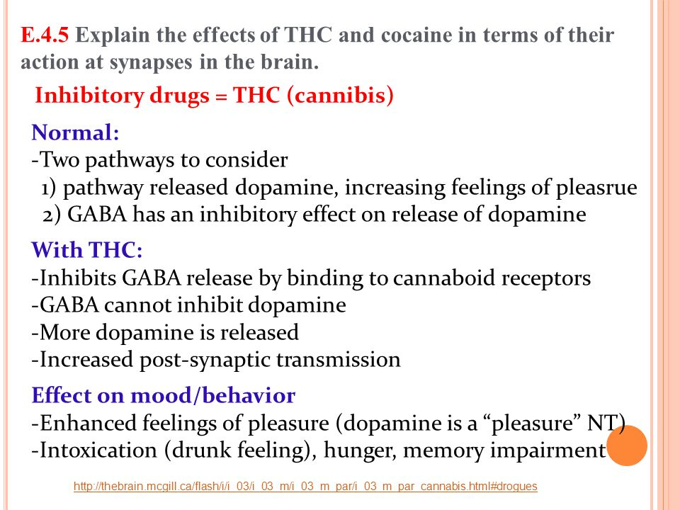 Inhibitory drugs = THC (cannibis)