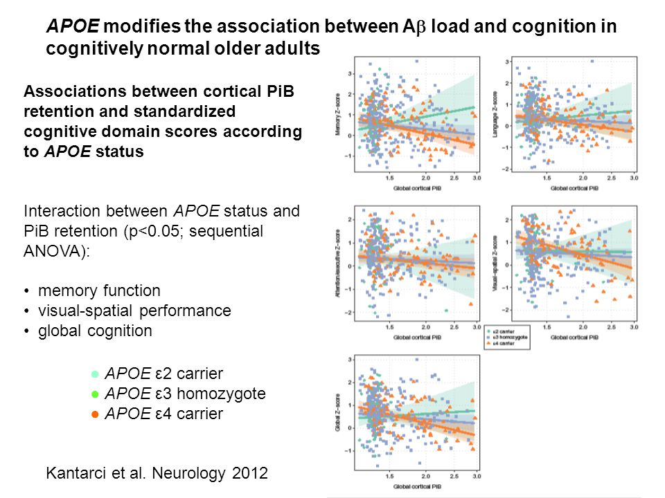 APOE modifies the association between A load and cognition in cognitively normal older adults