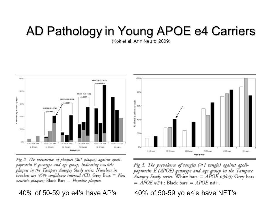 AD Pathology in Young APOE e4 Carriers (Kok et al, Ann Neurol 2009)