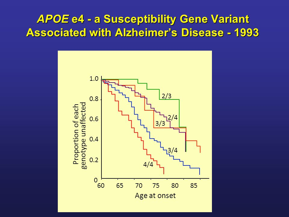 APOE e4 - a Susceptibility Gene Variant Associated with Alzheimer's Disease - 1993