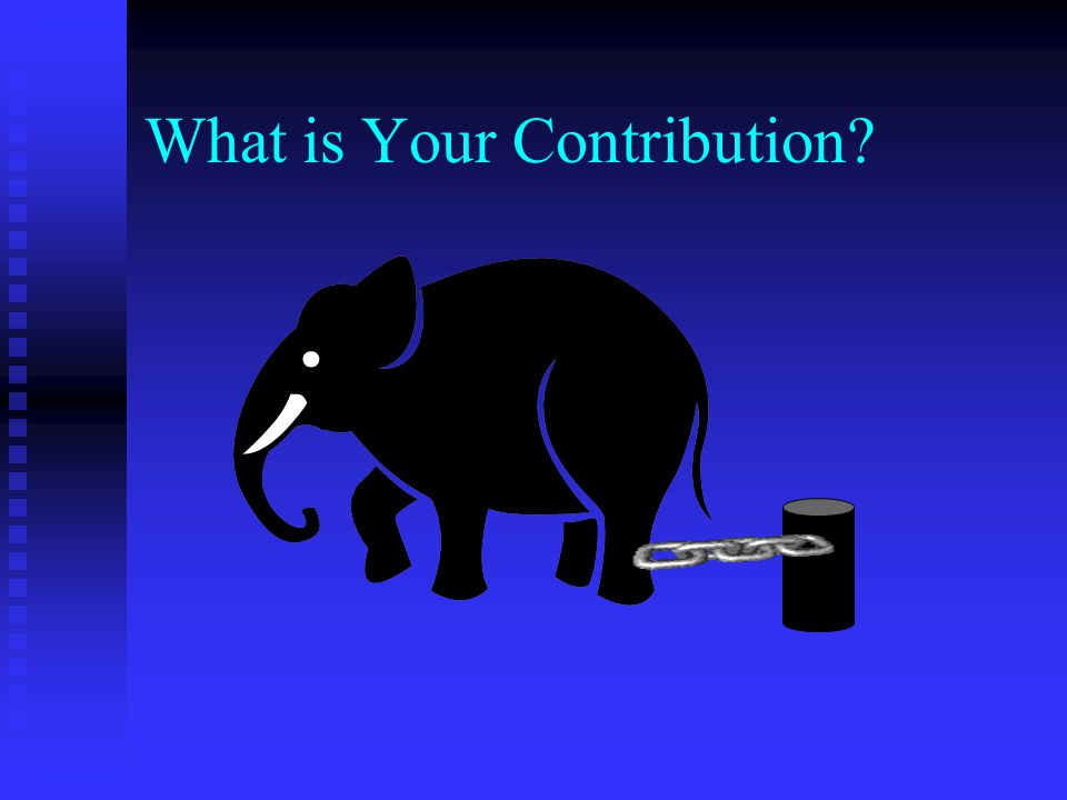 What is Your Contribution