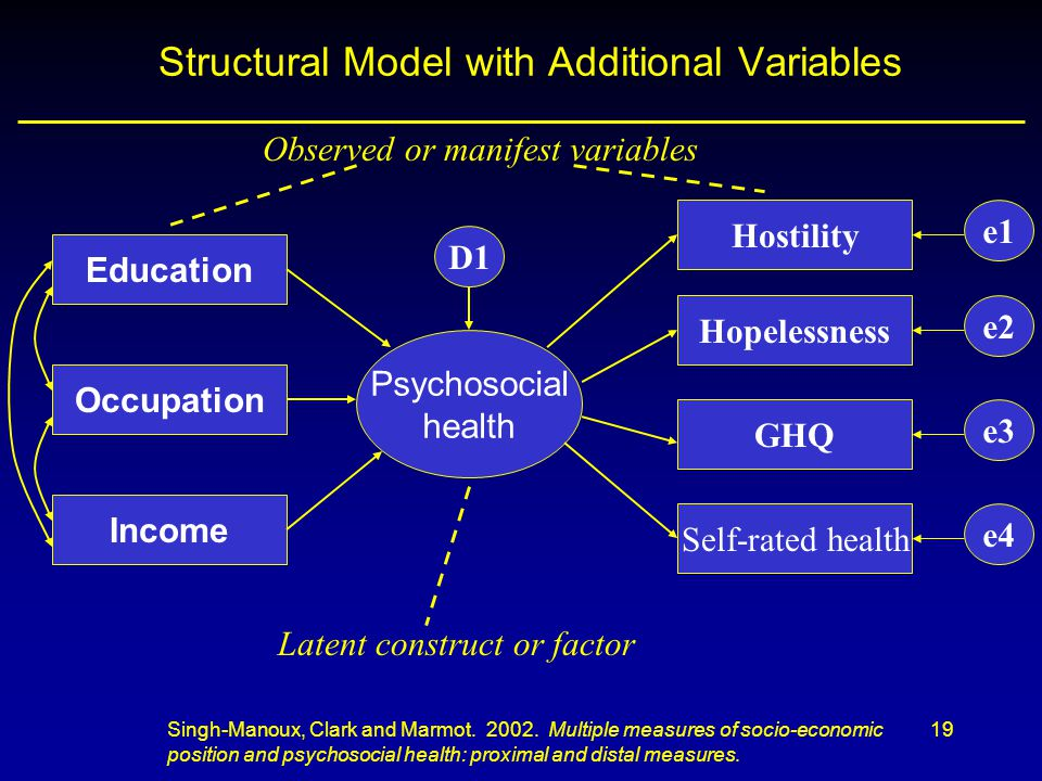 Structural Model with Additional Variables