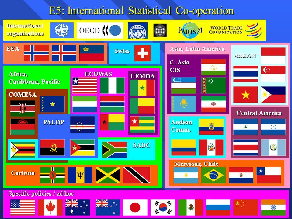 E5: International Statistical Co-operation