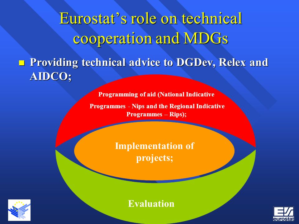 Eurostat's role on technical cooperation and MDGs