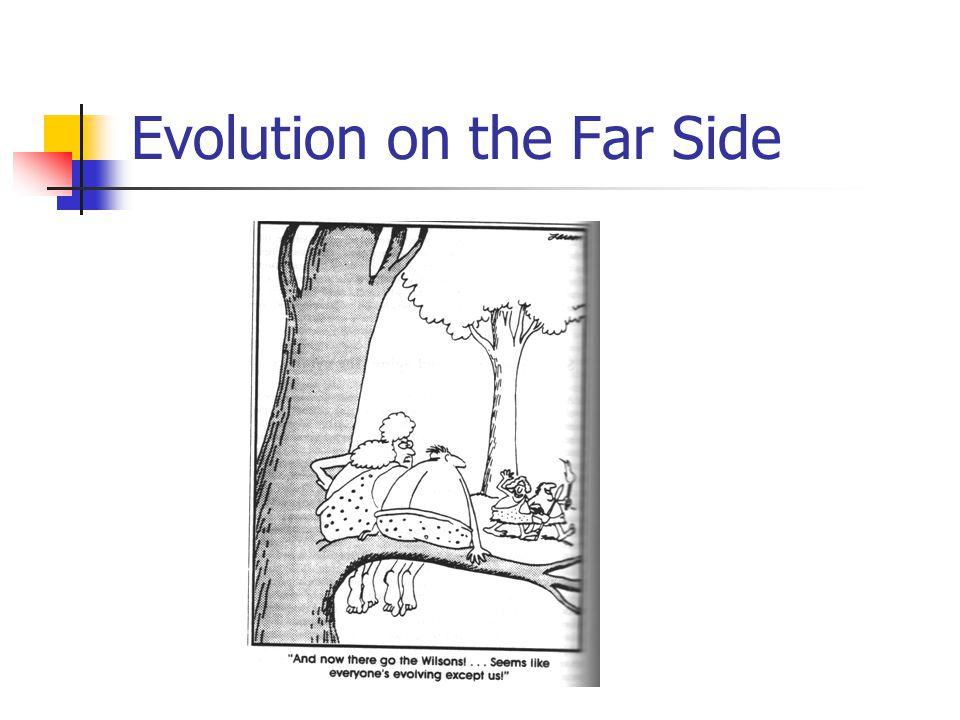 Evolution on the Far Side