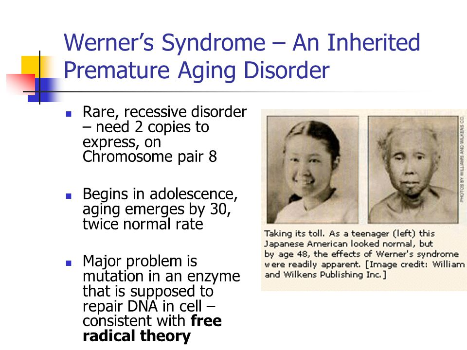 the clinical description of werner syndrome Werner's syndrome: a clinical-roentgenentity' harold g jacobson, md, harold rifkin, md, and dorothea zucker-franklin, md in 1904, otto werner (1) described a.