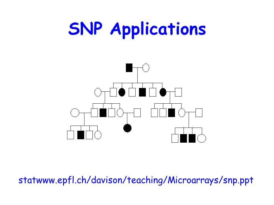 SNP Applications statwww.epfl.ch/davison/teaching/Microarrays/snp.ppt