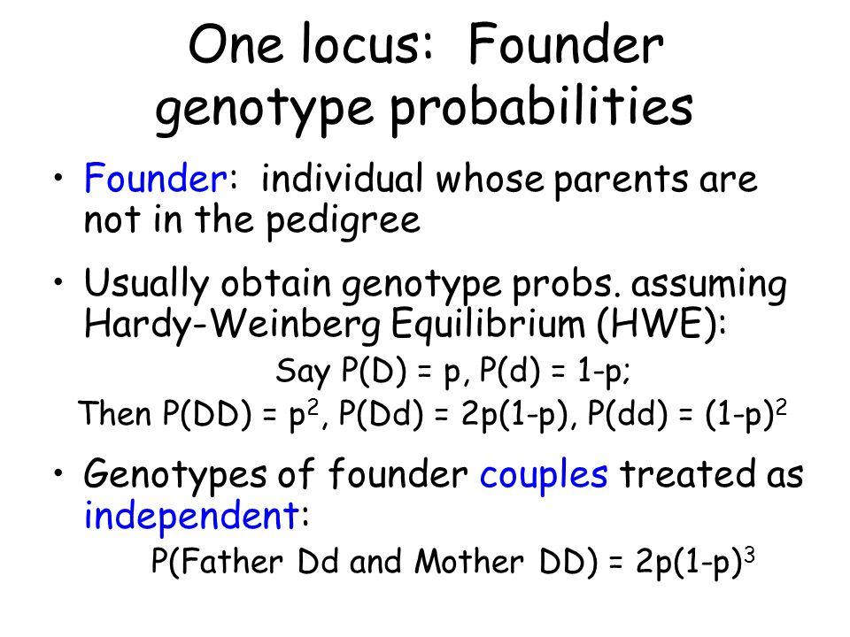 One locus: Founder genotype probabilities