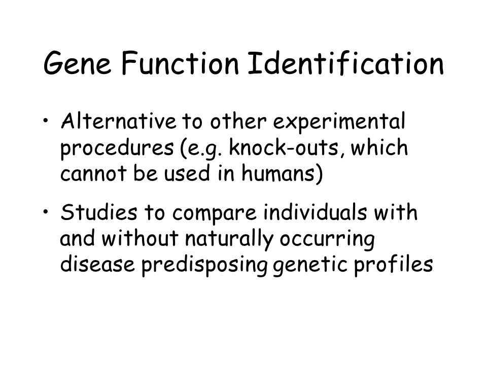 Gene Function Identification