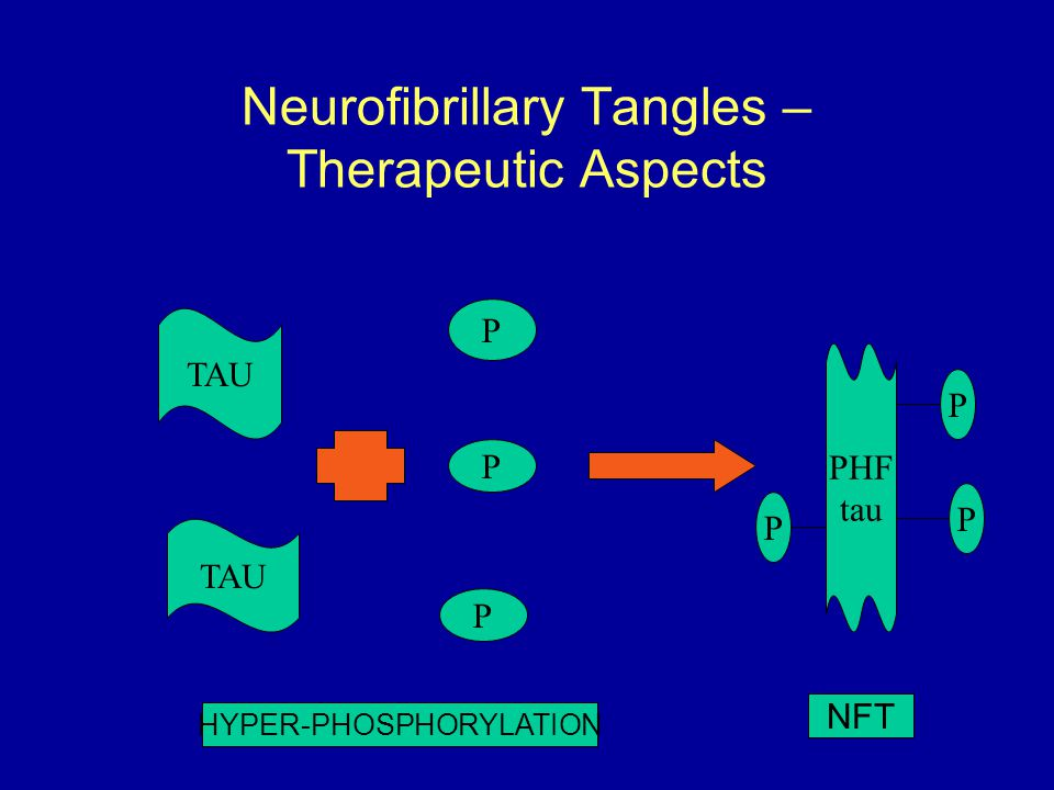 Neurofibrillary Tangles – Therapeutic Aspects