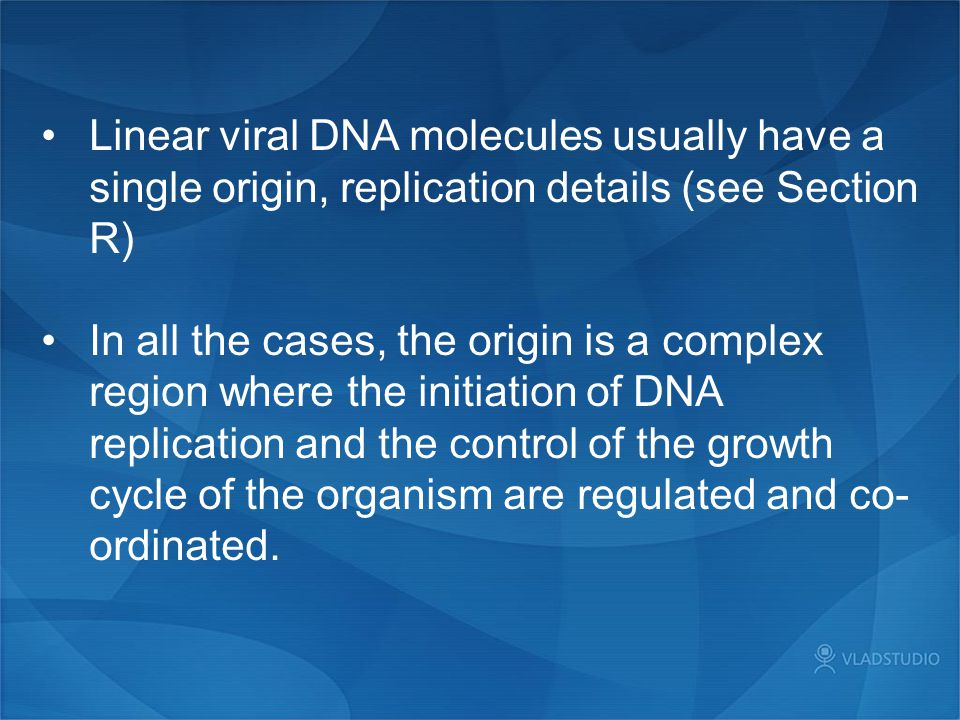 Linear viral DNA molecules usually have a single origin, replication details (see Section R)