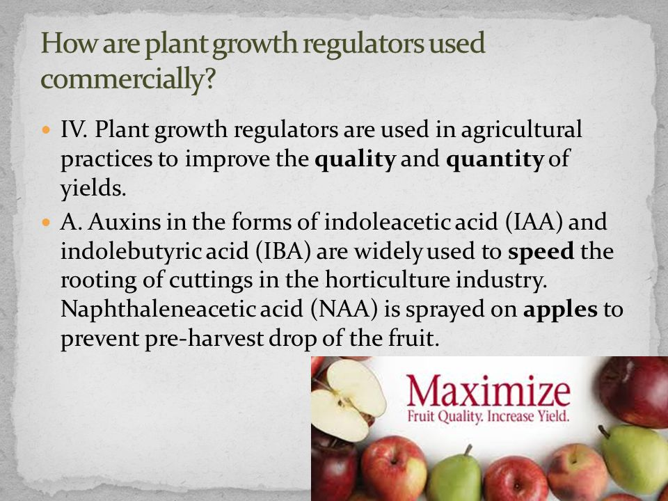 How are plant growth regulators used commercially
