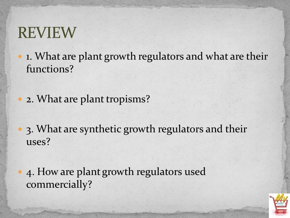 REVIEW 1. What are plant growth regulators and what are their functions 2. What are plant tropisms