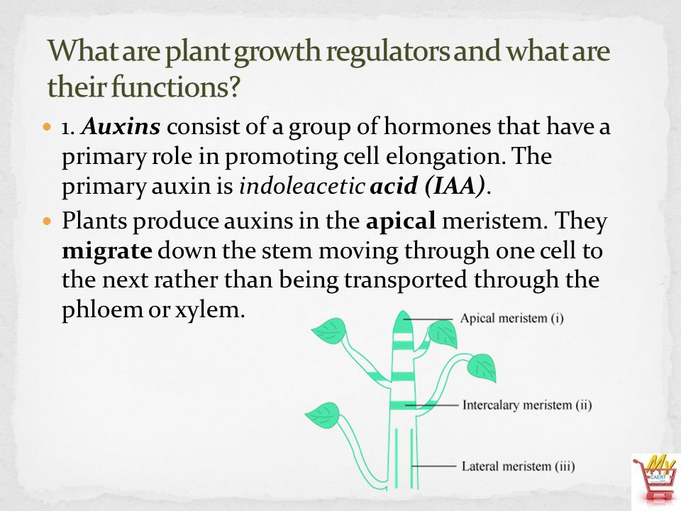 What are plant growth regulators and what are their functions