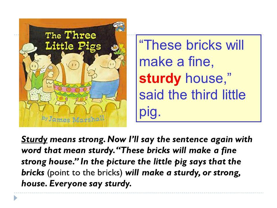 These bricks will make a fine, sturdy house, said the third little pig.