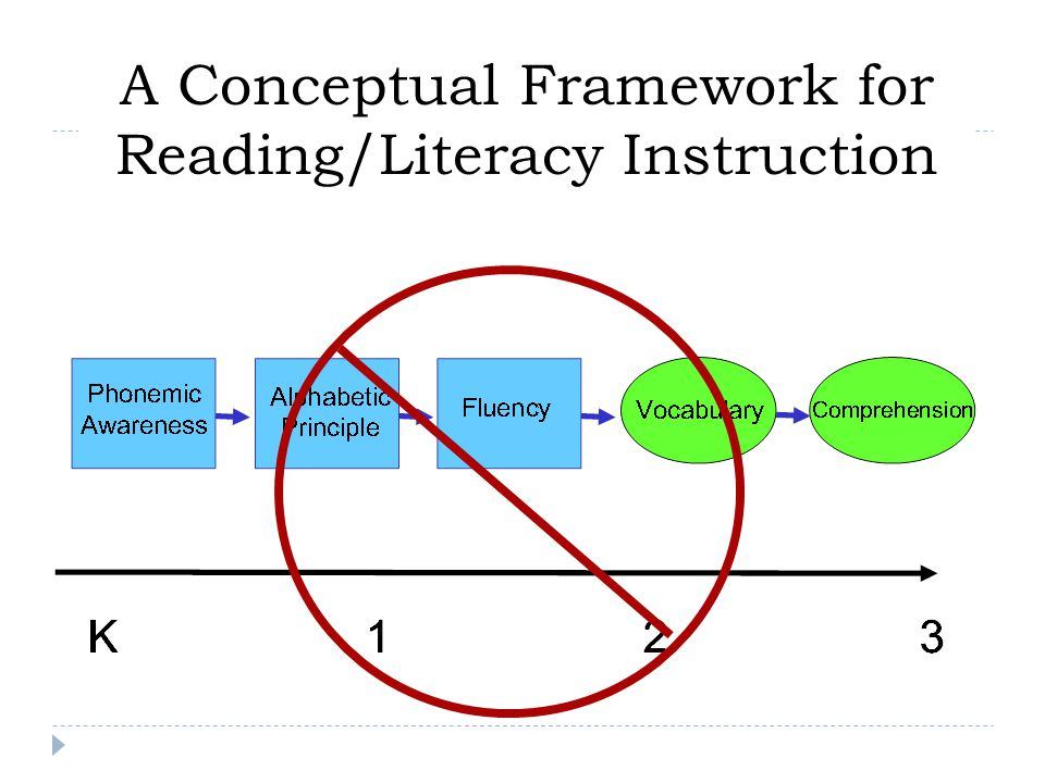 A Conceptual Framework for Reading/Literacy Instruction