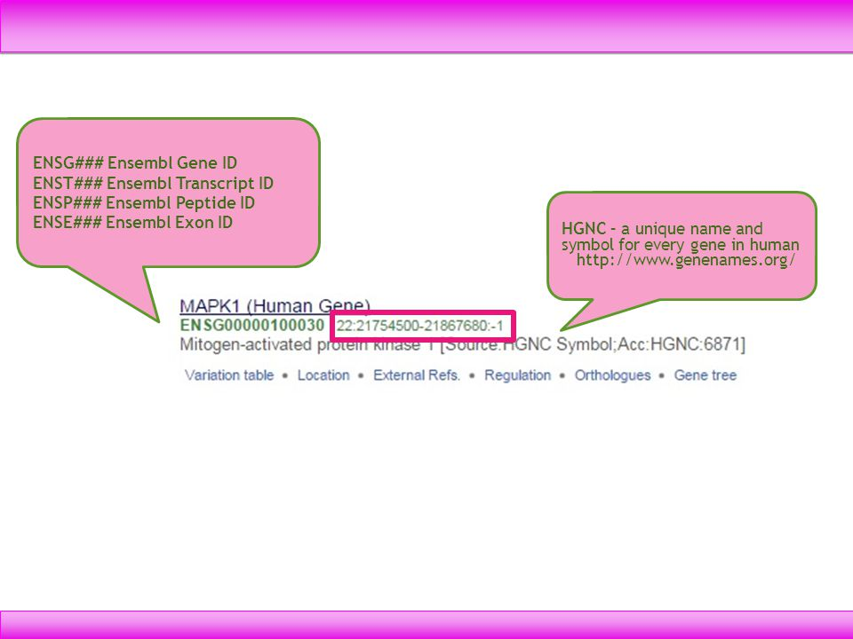ENSG### Ensembl Gene ID