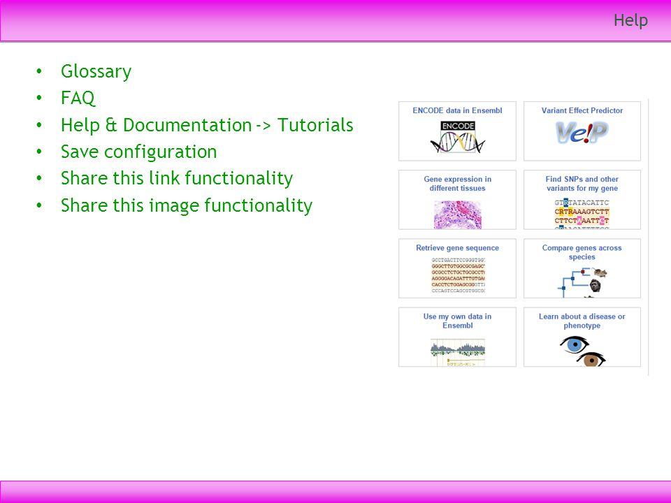 Help & Documentation -> Tutorials Save configuration