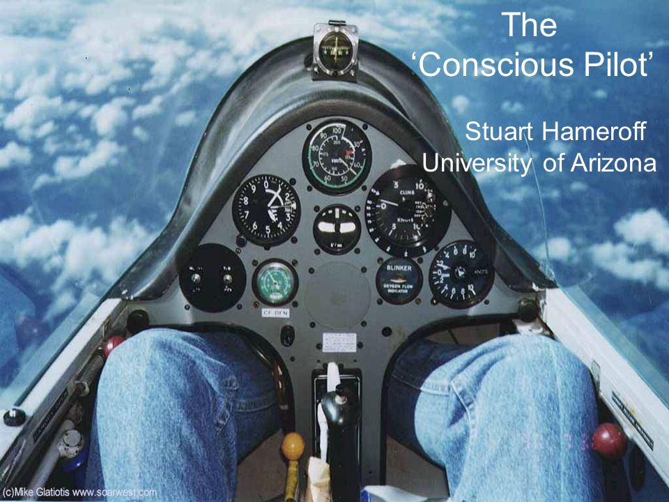 The 'Conscious Pilot' Stuart Hameroff University of Arizona