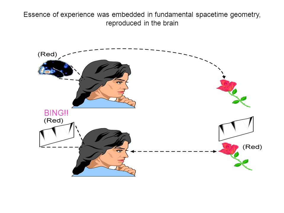 Essence of experience was embedded in fundamental spacetime geometry,
