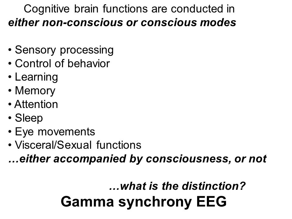 Gamma synchrony EEG Cognitive brain functions are conducted in