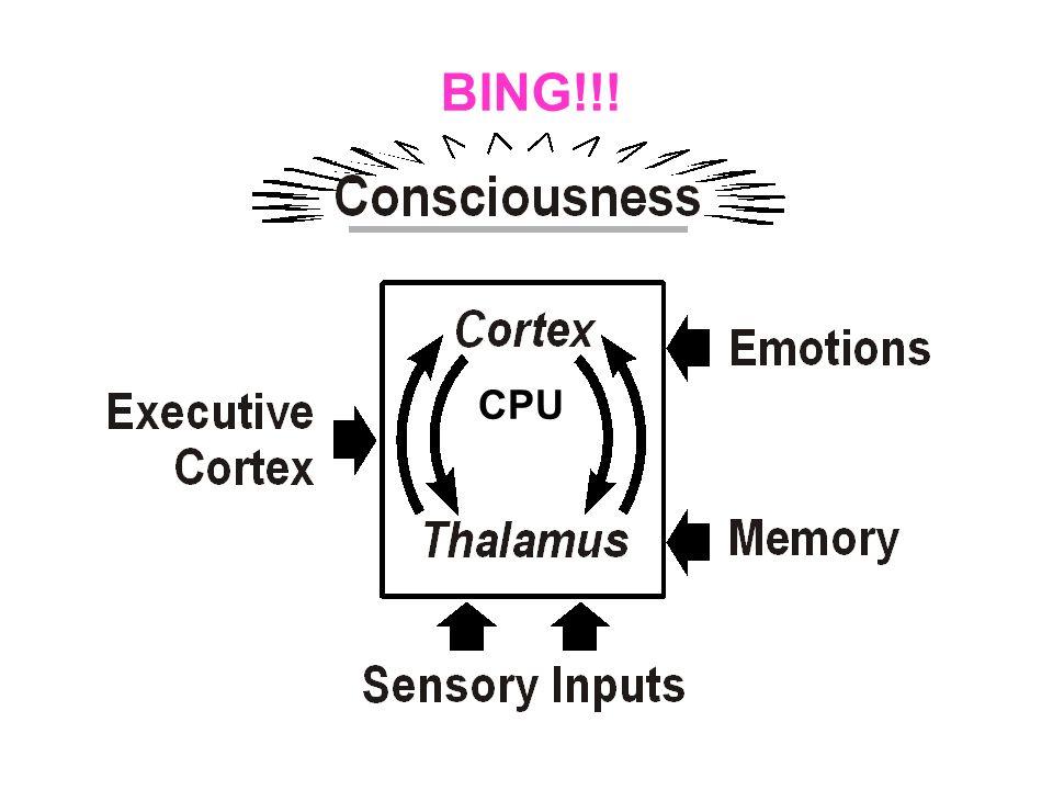 BING!!! CPU