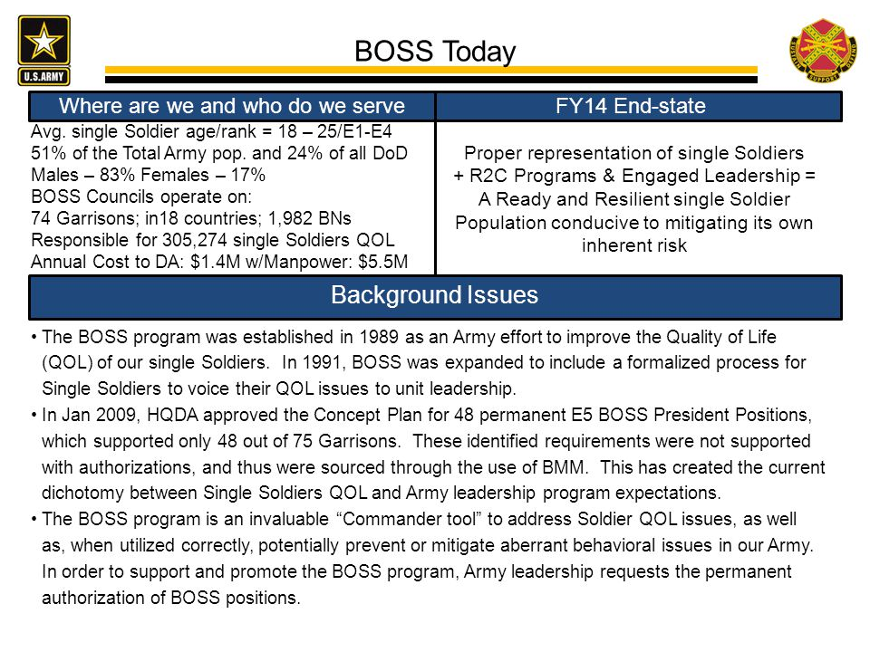 BOSS Today Background Issues Where are we and who do we serve