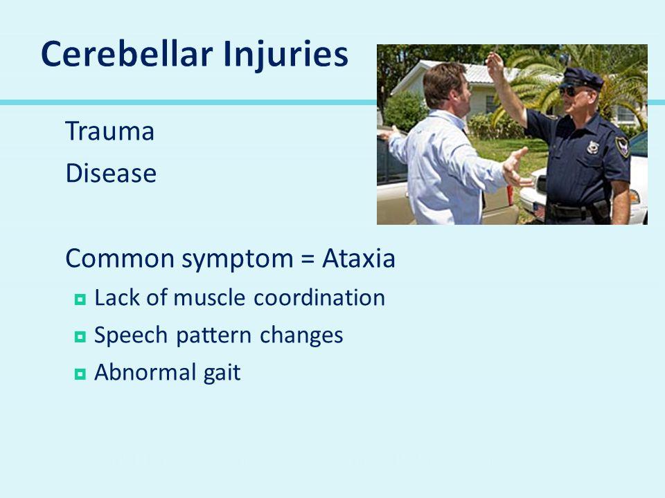 Cerebellar Injuries Trauma Disease Common symptom = Ataxia