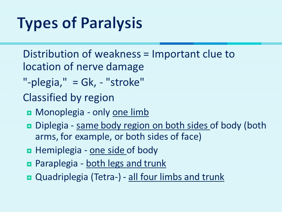 Types of Paralysis Distribution of weakness = Important clue to location of nerve damage. -plegia, = Gk, - stroke