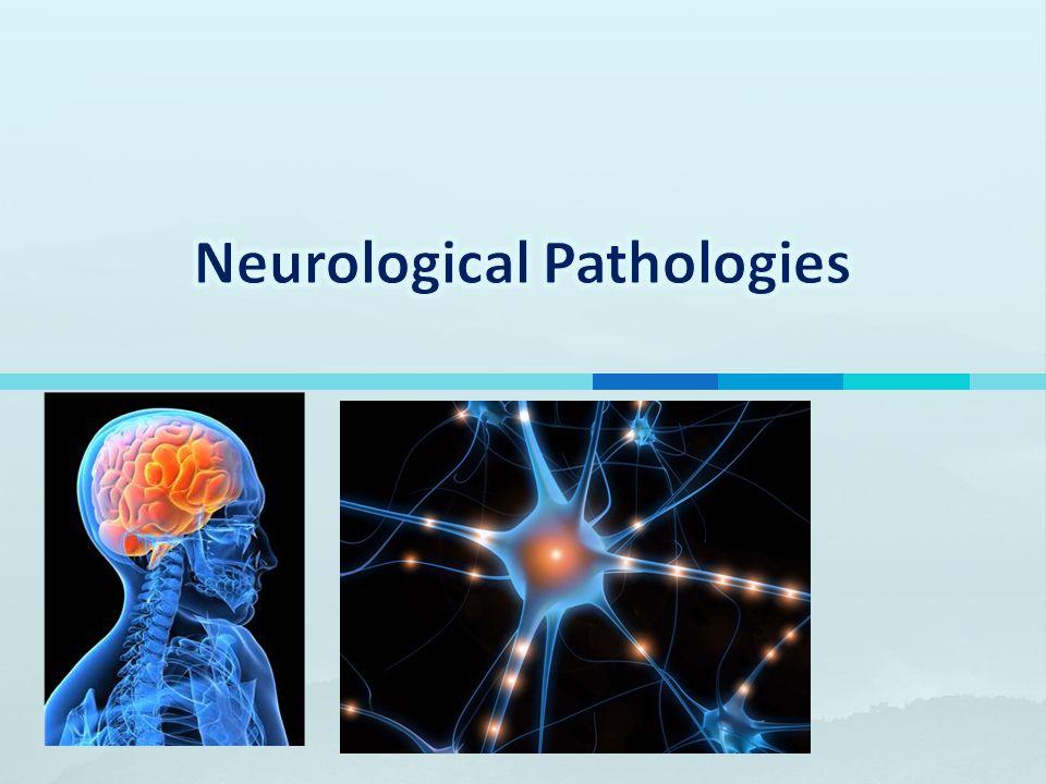 Neurological Pathologies