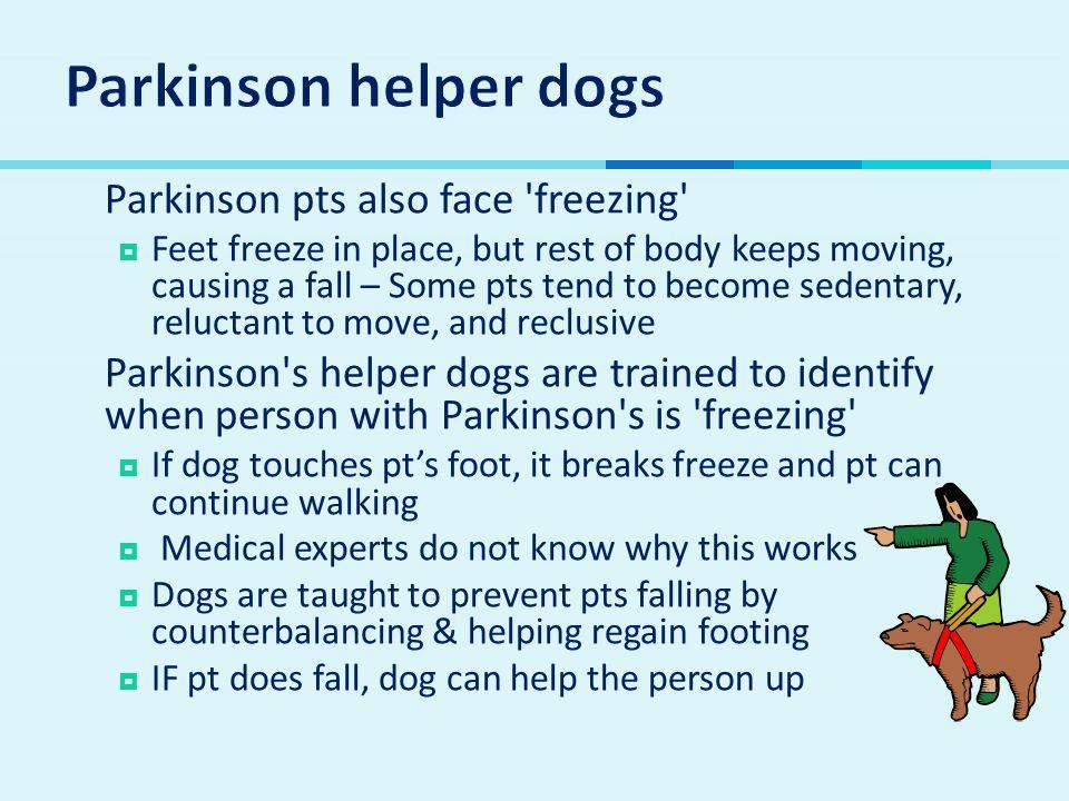 Parkinson helper dogs Parkinson pts also face freezing
