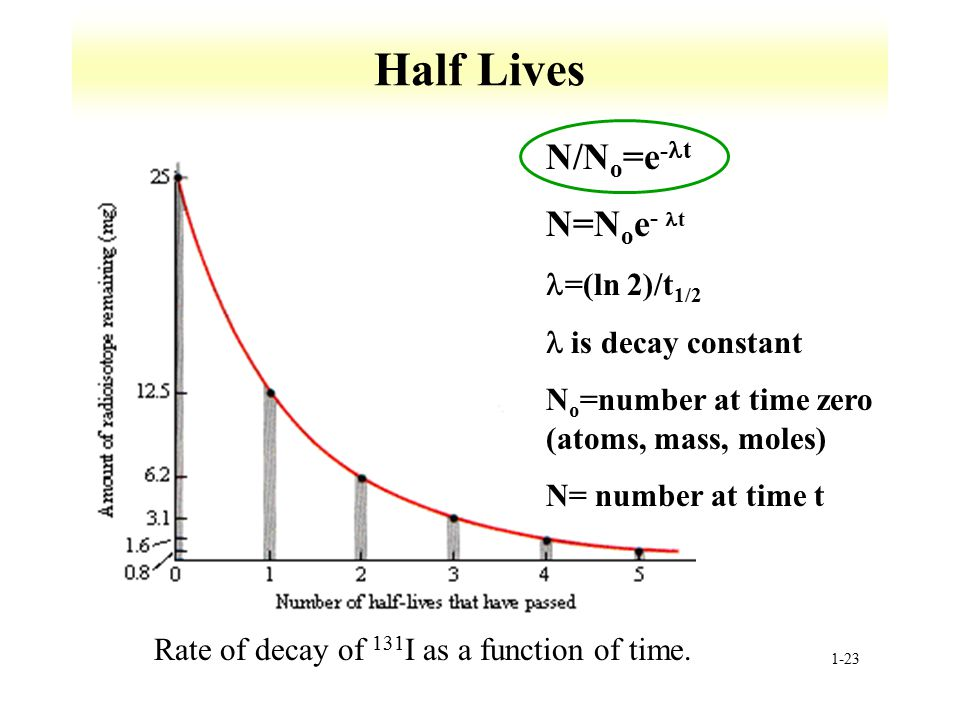 Half Lives N/No=e-t N=Noe- t =(ln 2)/t1/2 l is decay constant