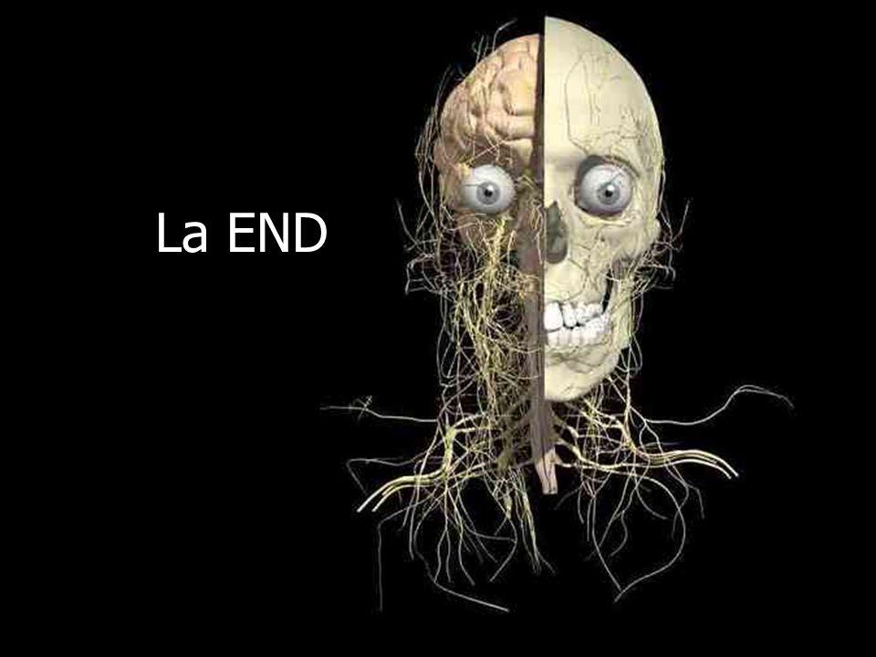 La END