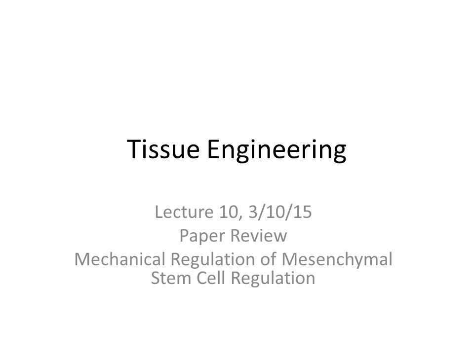 Mechanical Regulation of Mesenchymal Stem Cell Regulation