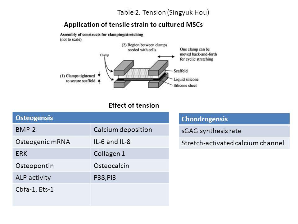 Table 2. Tension (Singyuk Hou)