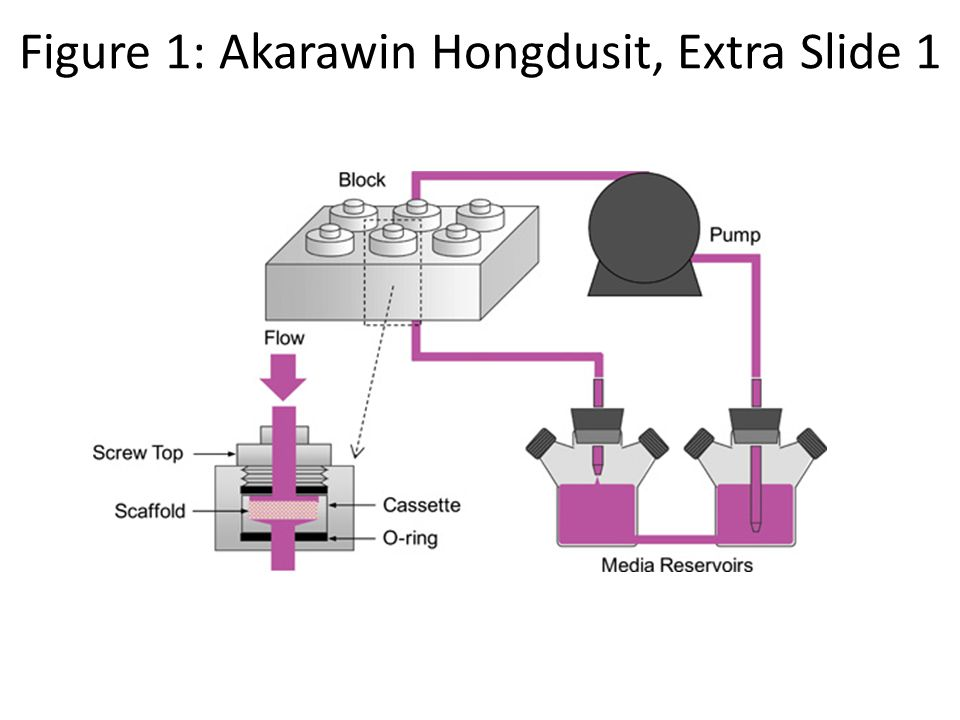 Figure 1: Akarawin Hongdusit, Extra Slide 1
