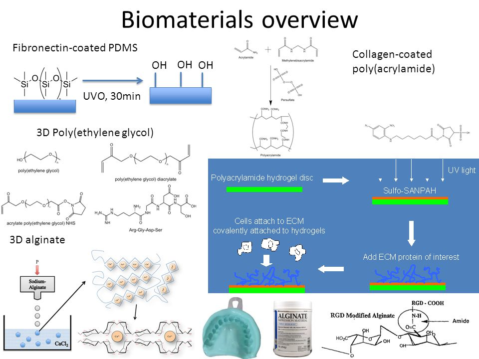 Biomaterials overview