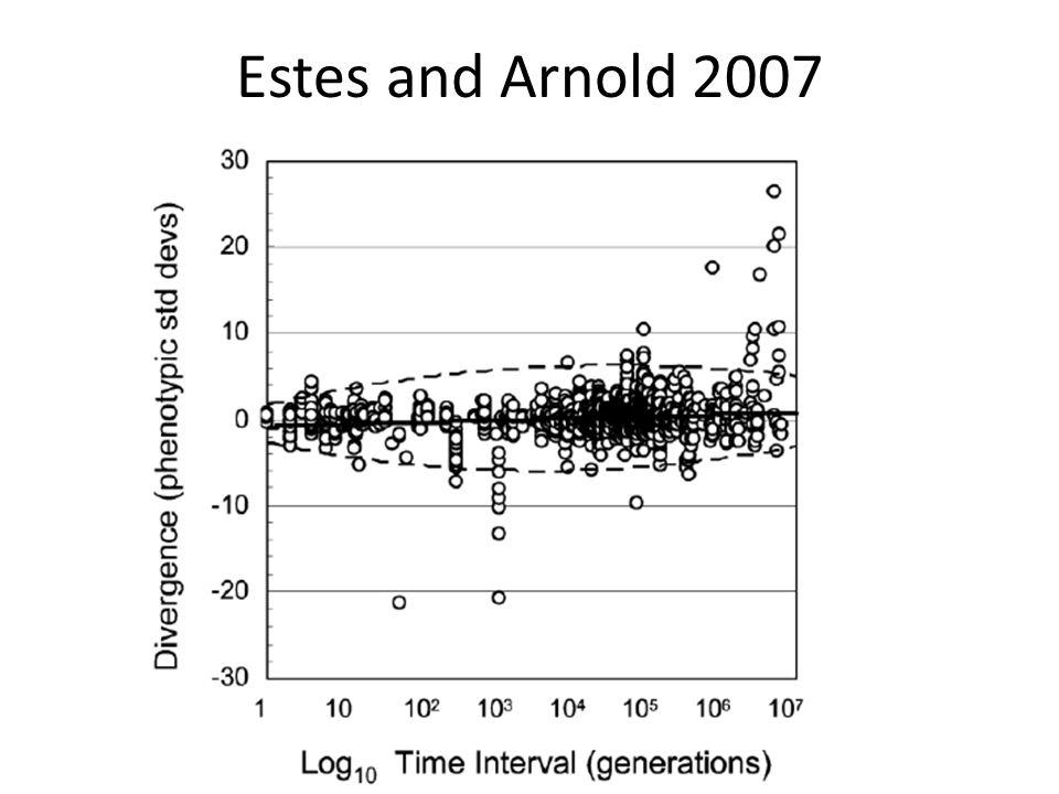 Estes and Arnold 2007
