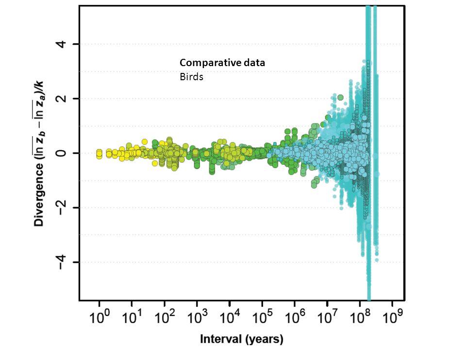 Comparative data Birds Fade the mammals, add birds.