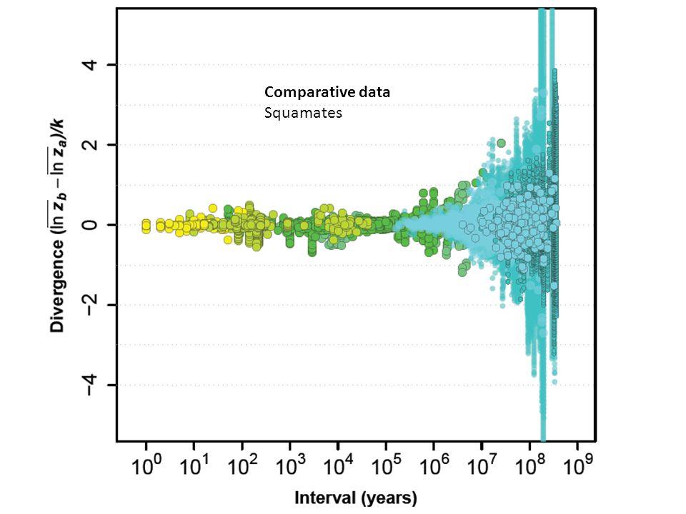 Comparative data Squamates and squamates.