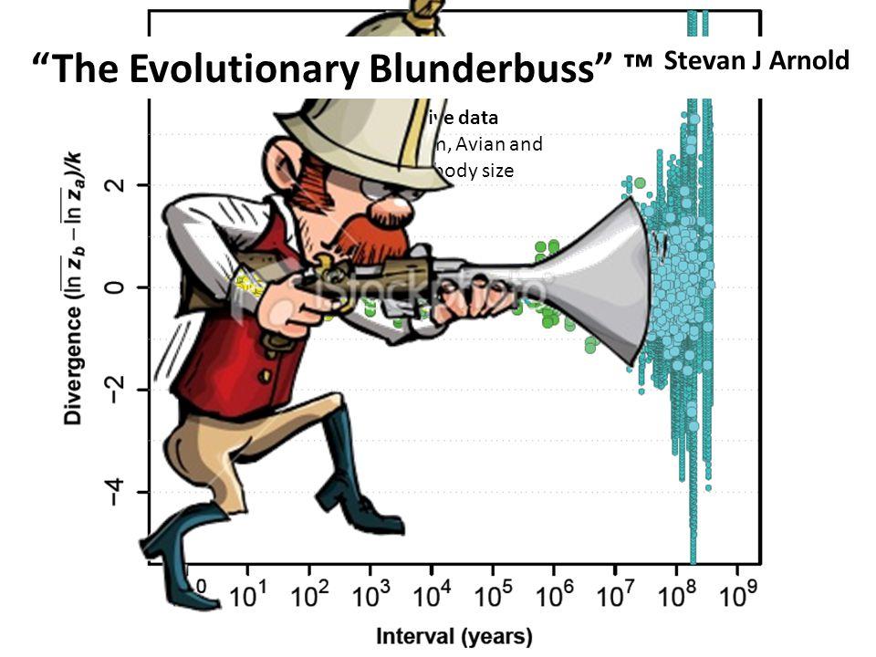 The Evolutionary Blunderbuss ™ Stevan J Arnold