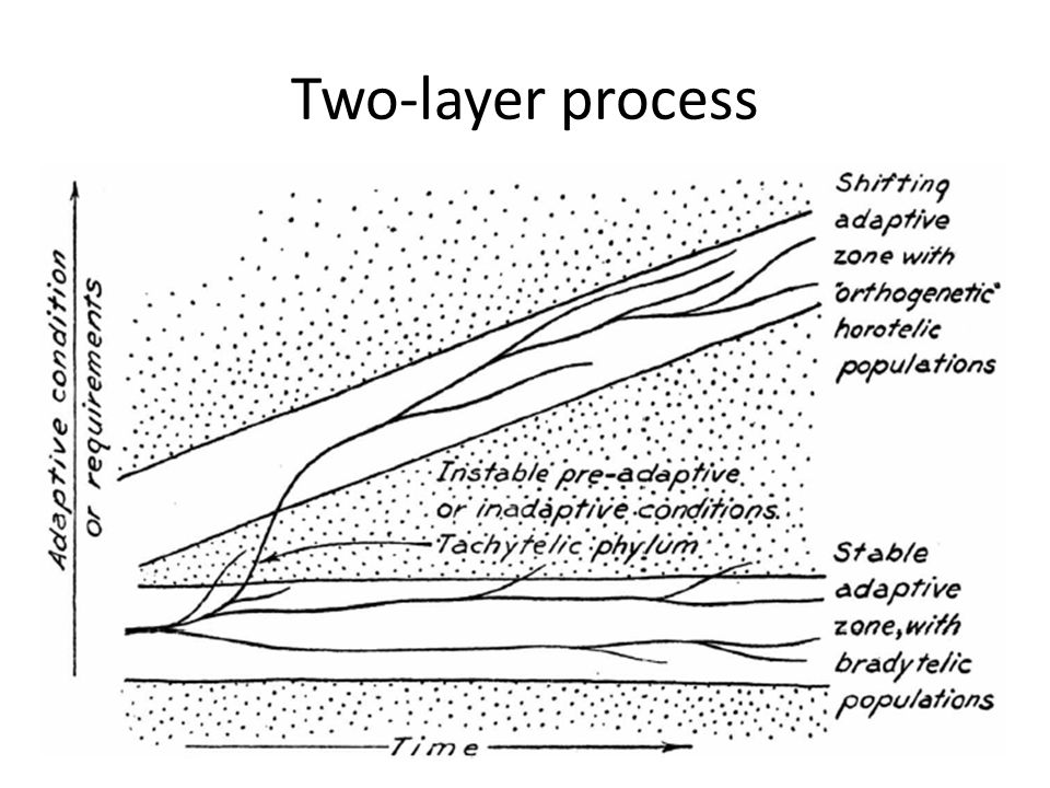 Two-layer process