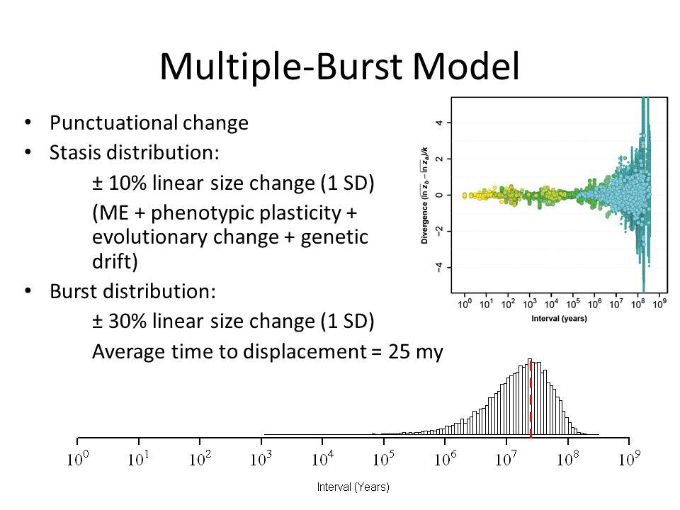Multiple-Burst Model Punctuational change Stasis distribution: