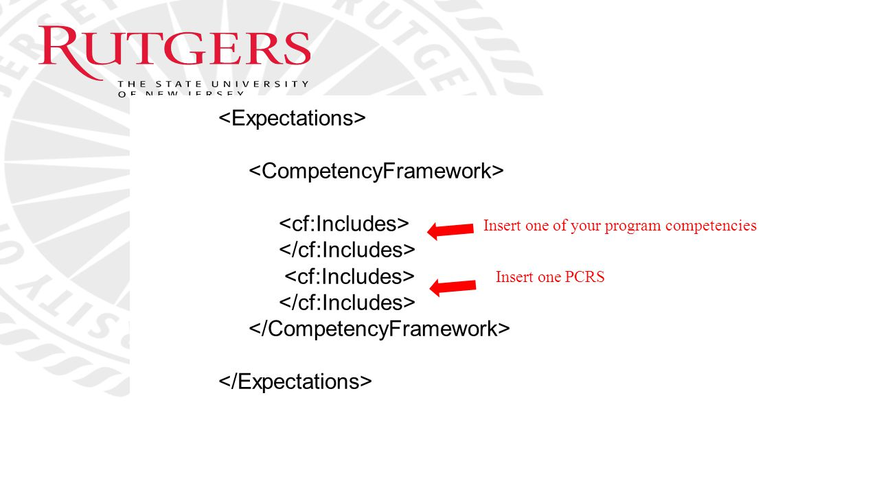 <Expectations> <CompetencyFramework>
