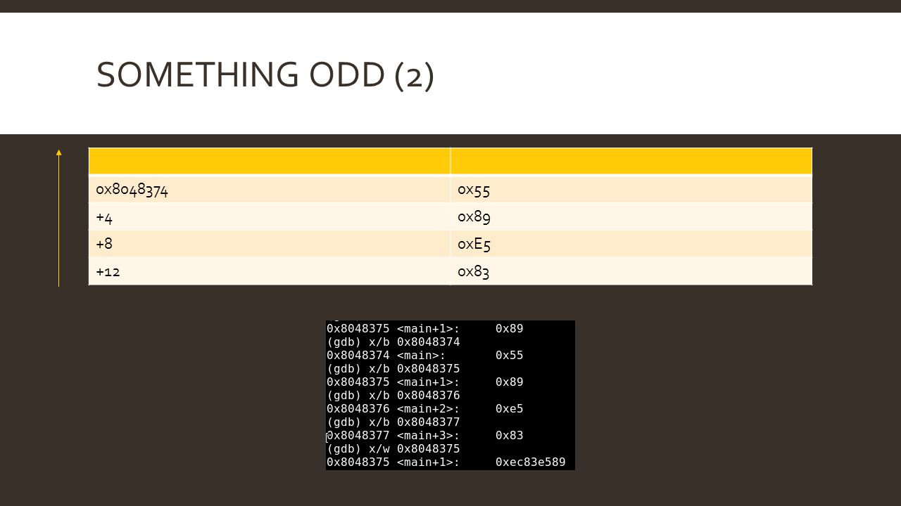 Something odd (2) 0x8048374 0x55 +4 0x89 +8 0xE5 +12 0x83