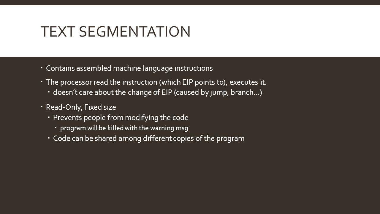 Text Segmentation Contains assembled machine language instructions