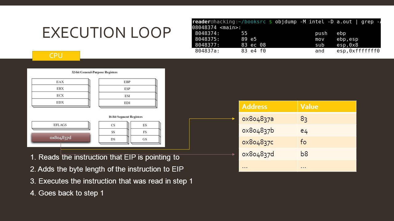 Execution loop CPU Address Value 0x804837a 83 0x804837b e4 0x804837c