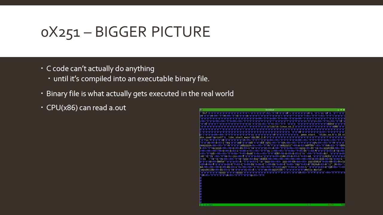 0x251 – Bigger Picture C code can't actually do anything