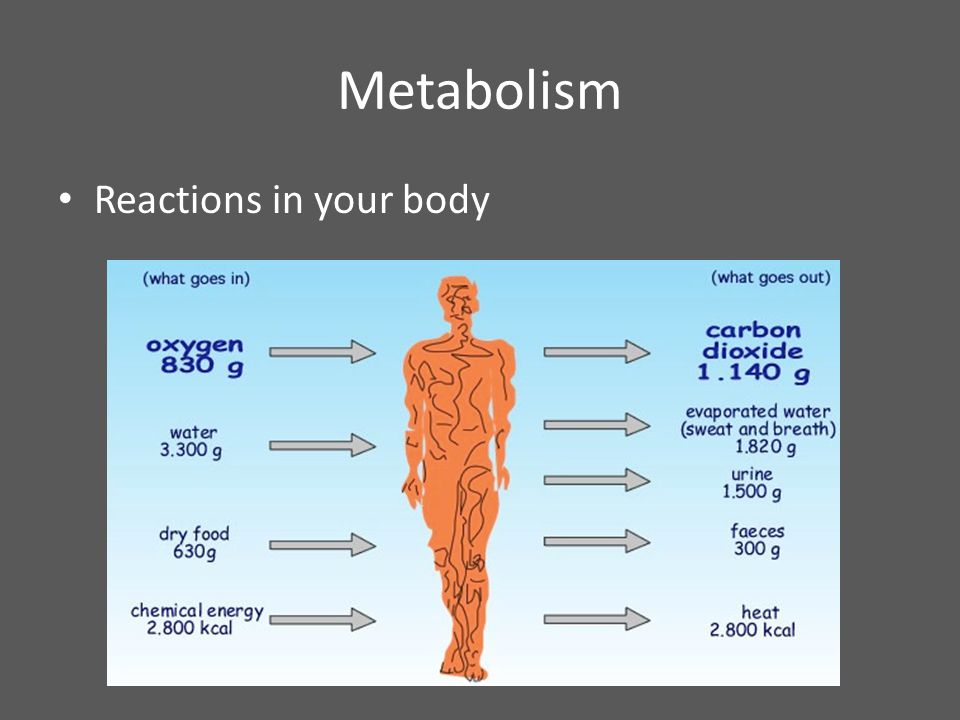 Metabolism Reactions in your body
