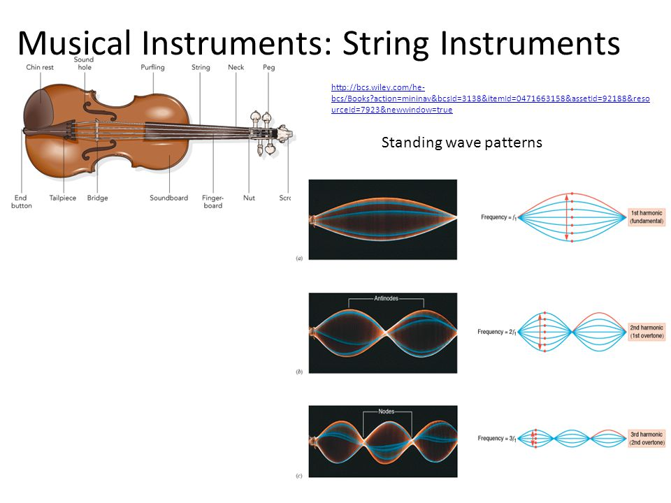 Musical Instruments: String Instruments
